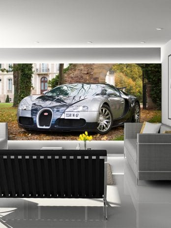 001.13 Bugatti Veyron 'puur sang'