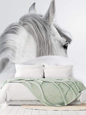 005.25 Paard