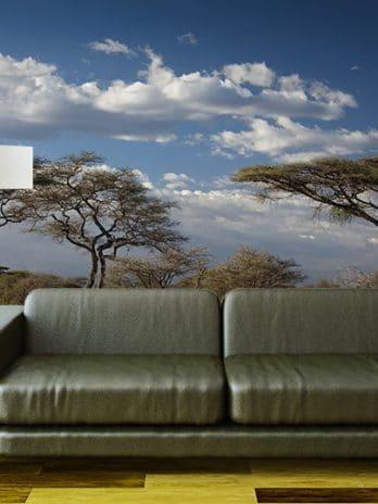 009.07 Serengeti