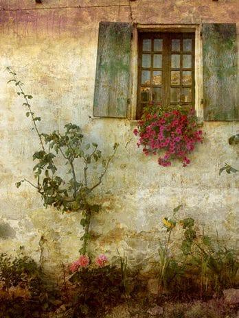 016.34 Oude muur met raam en bloemen
