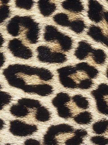 016.49 Animal Print