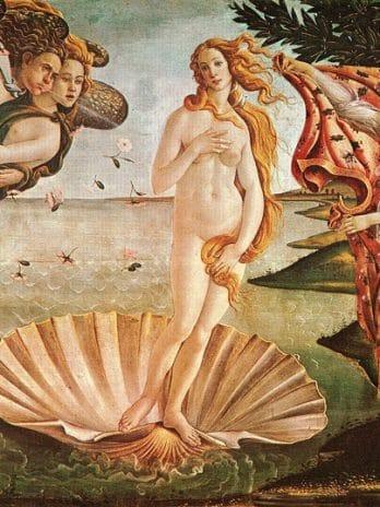 016.56 Venus
