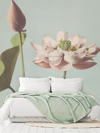 029.45 Lotusbloemen