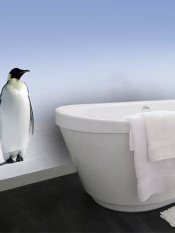 033.13 Pinguins