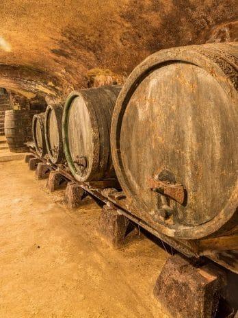 045.05 Wijnen wijnen
