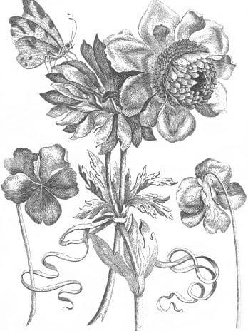 103.09 Pentekening bloemen met vlinder