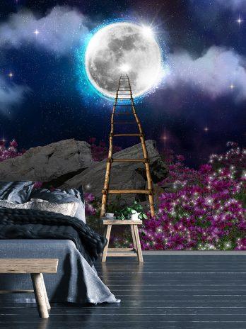 Ladder naar de maan – Fantasie