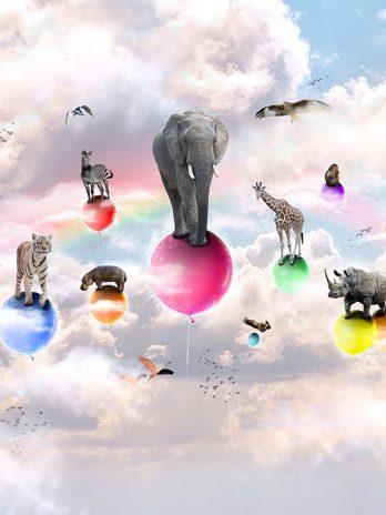 Dieren op ballonnen – Fantasie